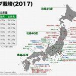 日本におけるホップ栽培(2017)